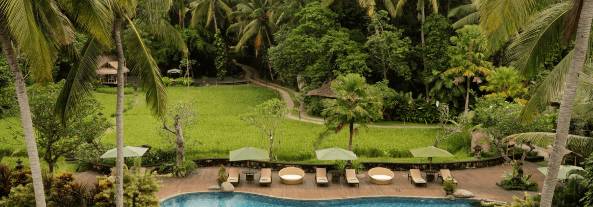 Bali resort surrounded by paddy fields